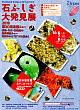 第30回石ふしぎ大発見展(京都ショー)