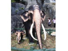 象の親子の像