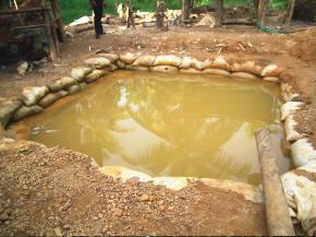 選鉱するプール